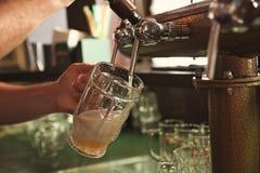 Hällande öl för bartender från klappet in i exponeringsglas i stång arkivbilder