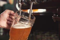 Hällande öl för bartender från klappet in i exponeringsglas i stång royaltyfria foton