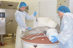 Hällande ingrediens för kvinna in i vaten royaltyfri foto
