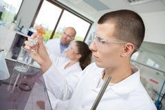 Hällande kemikalie för studentforskare in i dryckeskärlen royaltyfria bilder