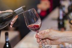 Hällande rött vin för uppassare in i exponeringsglas Fotografering för Bildbyråer