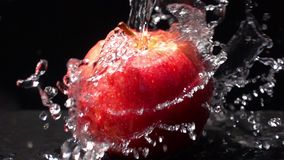 Hällande sötvatten på ett rött äpple på svart bakgrund stock video
