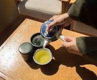 hällande tea för hand Royaltyfria Foton