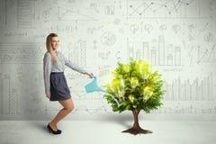Hällande vatten för affärskvinna på växande träd för lightbulb Royaltyfri Foto