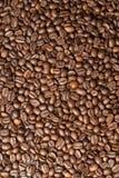 hällt kaffe Arkivfoton