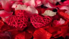 Hälsa valentin med kronblad för för längd i fot räknatgarneringhjärta och ros