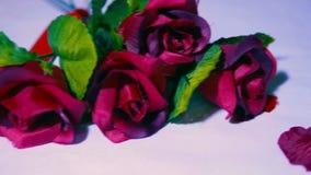 Hälsa valentindag med längd i fot räknat av rosen