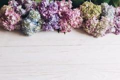 Hälsningar fjädrar lyckliga mödrar för dag Kvinnadag Härliga vanlig hortensiablommor på lantligt vitt trä, lägenhet lägger Färgri royaltyfria bilder
