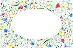 Hälsningkort med ängblommor Arkivbilder