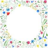 Hälsningkort med ängblommor Royaltyfri Foto