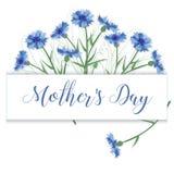 Hälsningkort med blåklinter på dag för moder` s Lyckönskan Royaltyfria Bilder