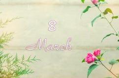 Hälsningkort med blommor och thujaen på en grå bakgrund, marc Royaltyfri Bild