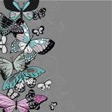 Hälsningkort med fjärilar på en grå bakgrund royaltyfri illustrationer