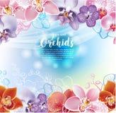 Hälsningkort med orkidéblommor royaltyfri illustrationer
