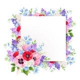 Hälsningkortet med rött, rosa färger och lilor blommar också vektor för coreldrawillustration royaltyfri illustrationer