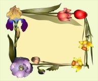 Hälsningskort med blomman Royaltyfria Bilder