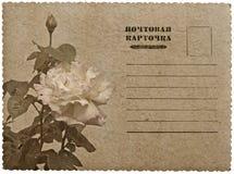 Hälsningskort med ron. Ryskt språk Arkivbild