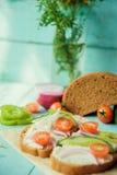 Hälsosam smörgås med ost, trädgårds- rädisa - sunt äta Royaltyfri Fotografi