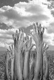 Hände angehoben in einstimmiges lizenzfreies stockbild