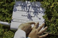 Hände auf Blindenschrift-Punkten Stockbild