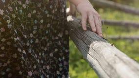 Hände auf einem hölzernen Zaun, Nahaufnahme stock footage