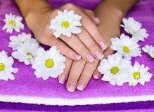 Hände auf Tüchern mit Blumen Stockbilder