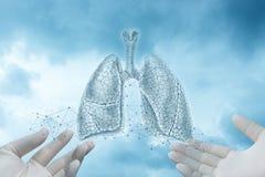 Hände in den Handschuhen zeigen eine Skizze von Lungen stockfoto