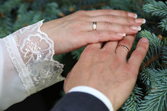 Hände der Braut und des Bräutigams in den Eheringen Lizenzfreie Stockfotografie