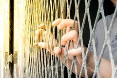 Hände der Frau auf einem Stahlgitter Lizenzfreies Stockbild