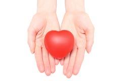 Hände der Frau rotes Herz halten. Weißer Hintergrund Lizenzfreies Stockfoto