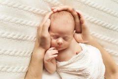 Hände der Mutter und des Vatis halten den Kopf eines neugeborenen Babys lizenzfreies stockbild