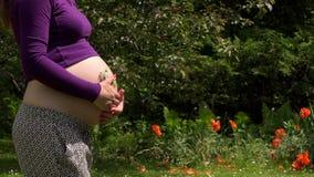 Hände der schwangeren Frau mit Gänseblümchen blüht zarten Bauch der Liebkosung im Garten stock footage