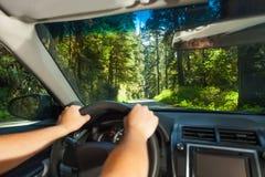 Hände des Fahrens des Mannes innerhalb des Autos im Rotholz Stockfotografie
