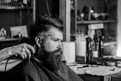 Hände des Friseurs mit Scherer und Kamm, Abschluss oben Bärtiger Kunde des Hippies, der Frisur erhält Friseursalonkonzept herrenf lizenzfreies stockfoto