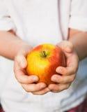 Hände des Kindes, die reifen roten Apfel anhalten Stockfotografie