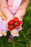 Hände des Kindes voll der Erdbeeren Stockfotos
