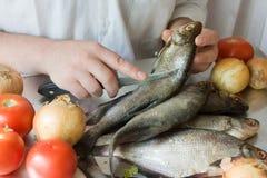 Hände des Kochens der Männer Stockfotografie