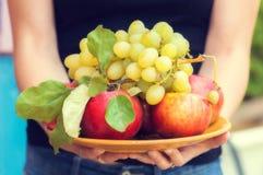 Hände des Mädchens, das eine Schale mit Äpfeln und Trauben hält stockbild