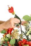 Hände, die Blumen anordnen Stockfotos