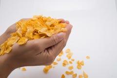Hände, die Corn Flakes hinter weißem Hintergrund halten Lizenzfreie Stockfotos