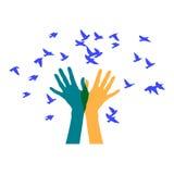 Hände, die eine Menge von Vögeln freigeben Lizenzfreie Stockfotografie
