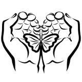 Hände, die eine Schmetterlingssorgfalt schützen und Romanze vektor abbildung