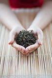 Hände, die einen Tee anhalten Lizenzfreie Stockfotos