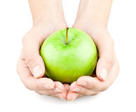 Hände, die heraus einen Apfel anhalten Stockfotografie