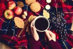 Hände, die Herbst-woolen umfassenden Herbstlebensstilkonzeptes Hintergrund der Tasse Kaffee Apple-Plätzchen-Zimt-Traube Draufsich Lizenzfreie Stockfotografie