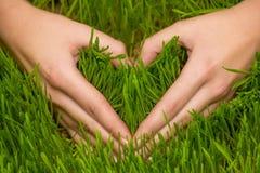 Hände, die Herzsymbol machen Stockfoto