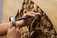 Hände, die Holz gravieren