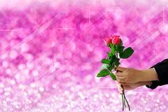 Hände, die rosafarbene Blume auf rosa Lichter festlichem undeutlichem bokeh Ba halten Lizenzfreies Stockfoto