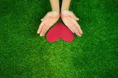Hände, die rotes Herz auf grünes Gras backround geben Lizenzfreie Stockfotos