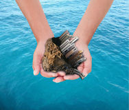 Hände, die Stadt über Meer anhalten Lizenzfreies Stockbild